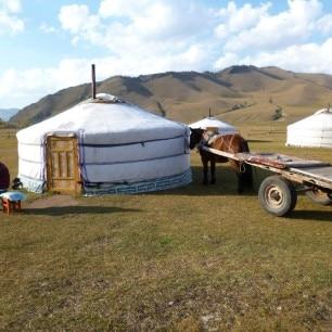 Rondreis Mongolie