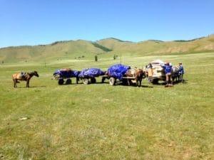 Terelj National Park - Rondreis Mongolie (Small)