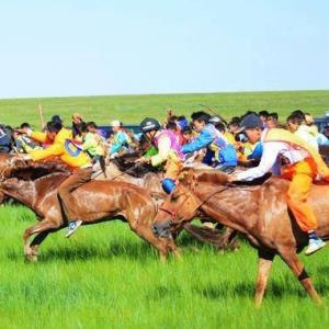 Nadaam festival Mongolië paardenrace