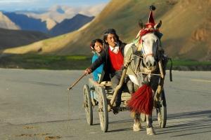 Cultuur Himalaya Trein