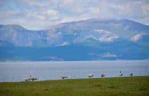 Khuvsgul Lake - Mevo Reizen