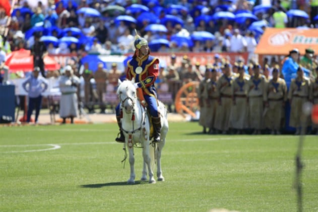 Naadam Festival Paard