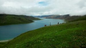 Qinghai Lake Xining - Mevo Reizen