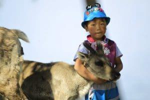 Tsaatan Mongolië - Mevo Reizen