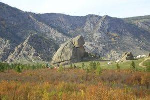 Turtle rock - Terelj National Park - Mevo Reizen