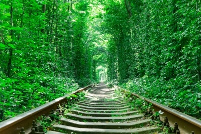 Spoor Tunnel of Love